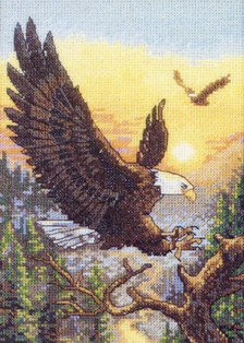Спор птиц и суд орла